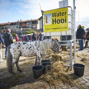 ELST - Paardenmarkt 2015